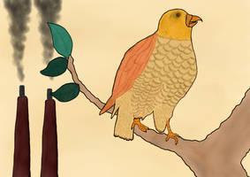 Birdproject
