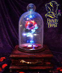 Beauty and The Beast Enchanted Rose by ritter99