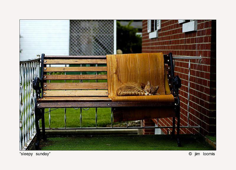 Sleepy Sunday by jimloomis