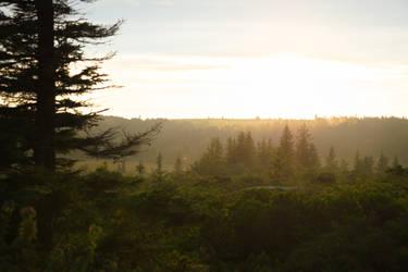 Sunset at Dolly Sods Wilderness, WV