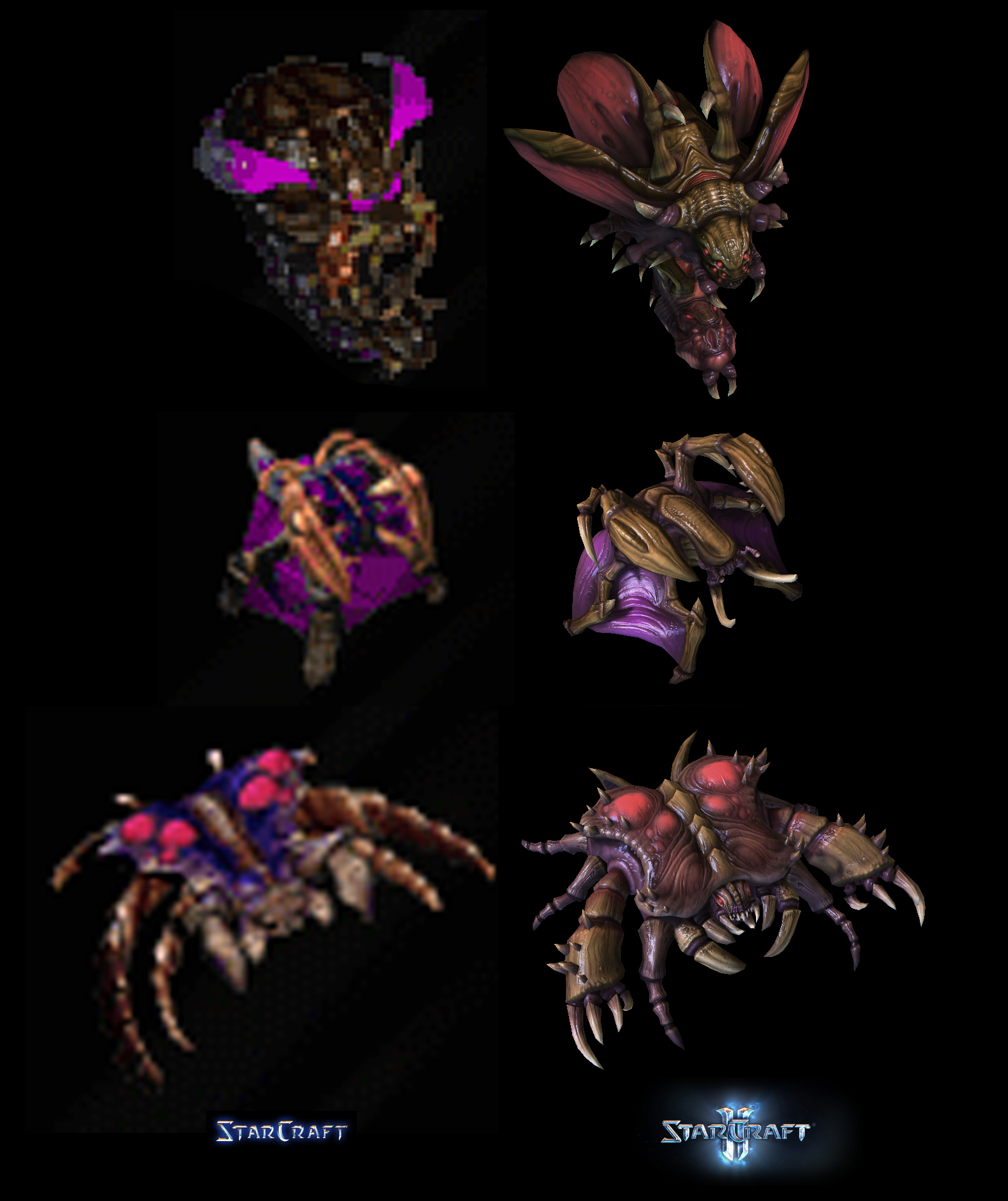 Zerg Compare by PhillGonzo