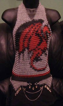 Dragon Halter
