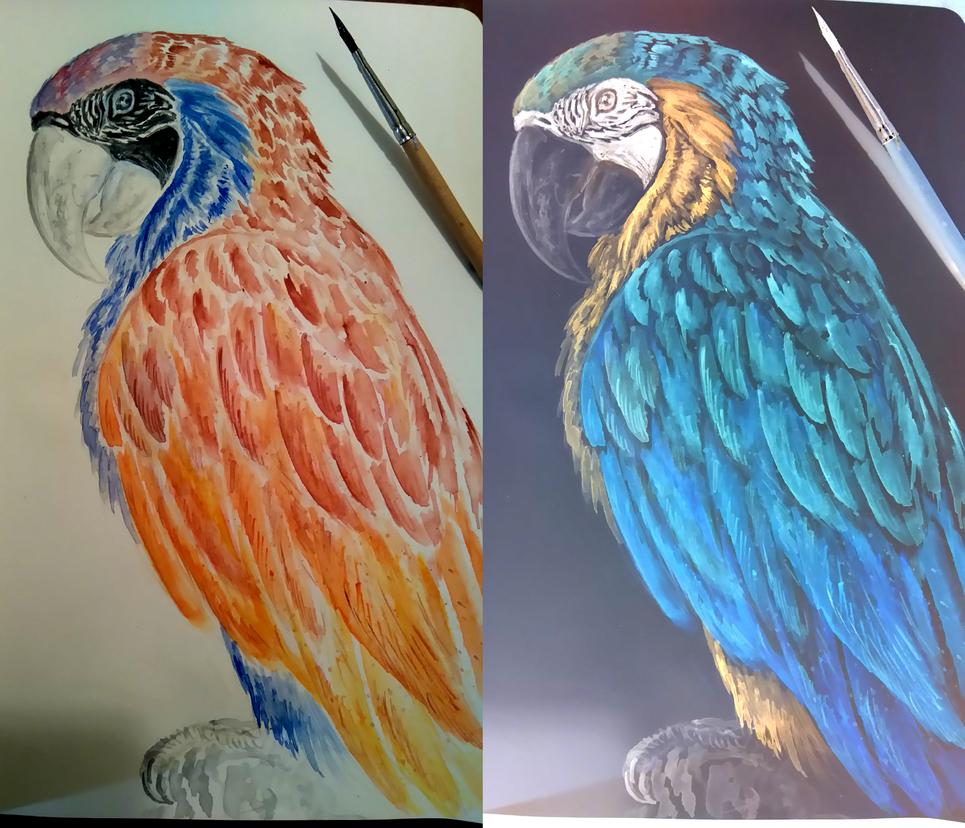 Negative Parrot by RavenCorona