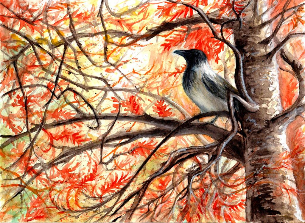 Watcher in the orange [CE] by RavenCorona