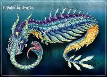 ADOPT AUCTION | Opabinia Dragon [CLOSED]