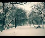 Winter frame...