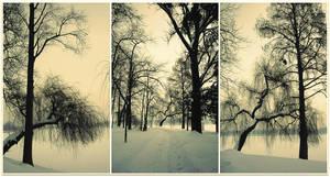 winter snapshots