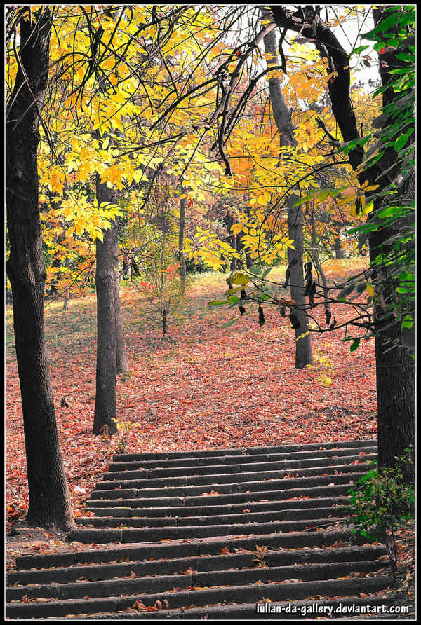 autumn stairs by Iulian-dA-gallery
