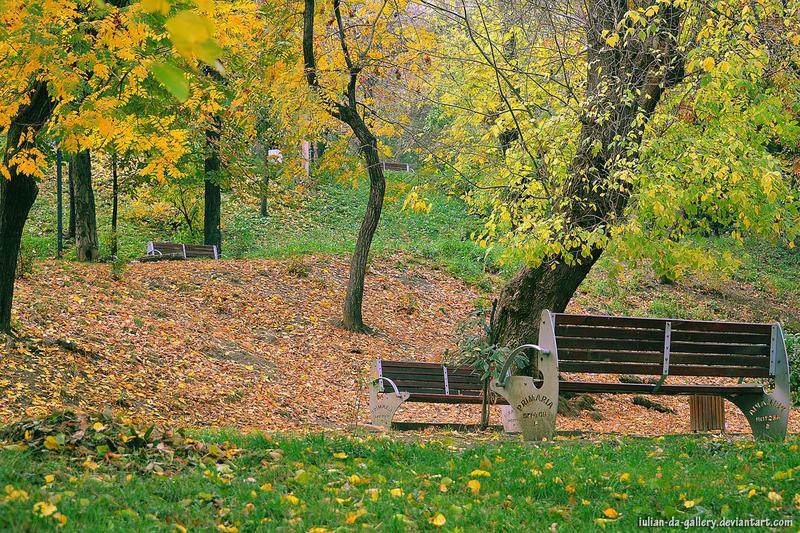 autumn in park by Iulian-dA-gallery