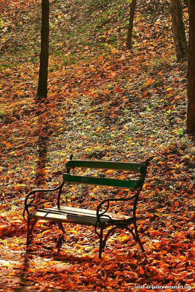 memories of autumn by Iulian-dA-gallery