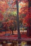 autumnscapes