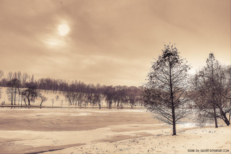 desolate atmosphere... by Iulian-dA-gallery