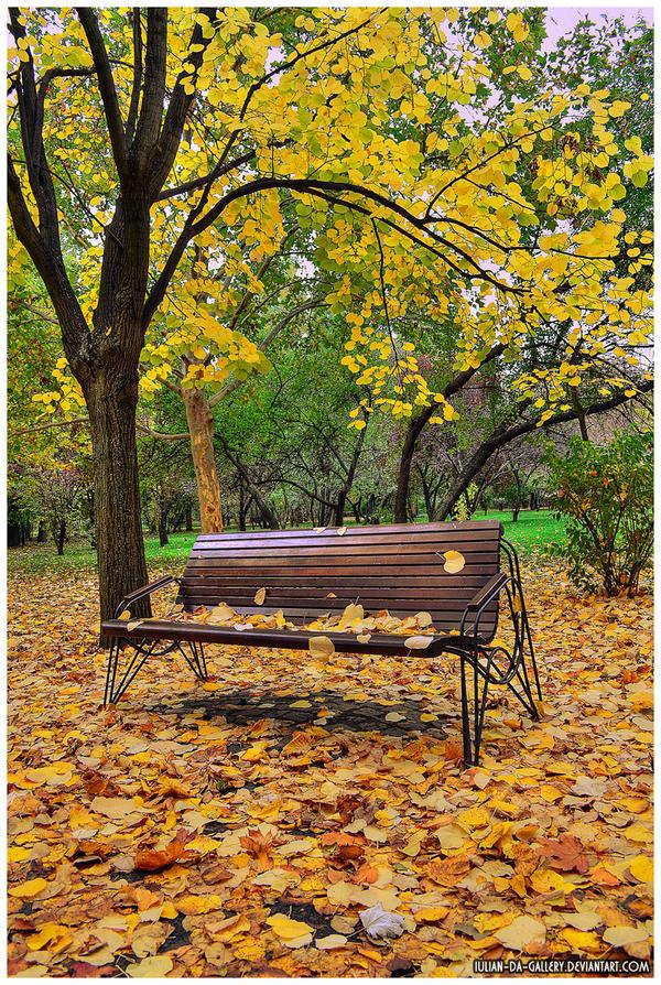 autumn memories... by Iulian-dA-gallery