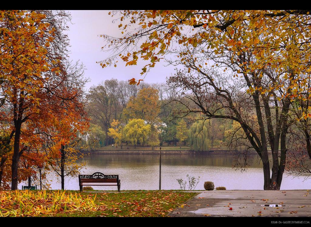 alone in autumn... by Iulian-dA-gallery