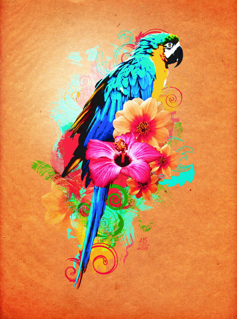 Beautiful Parrot Tutorial by AngeInk