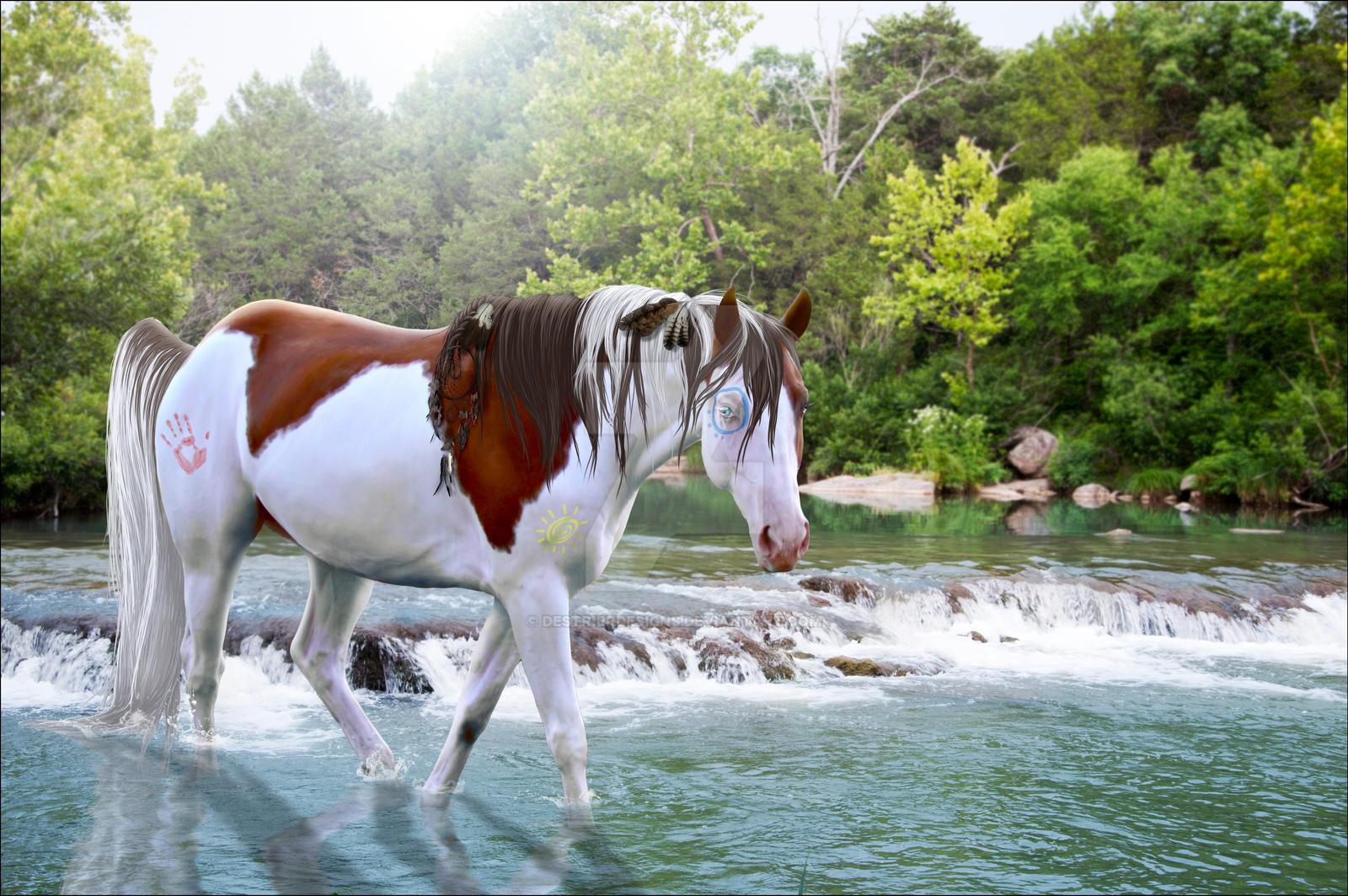 Native American Horse by DestrierDesigns