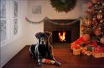 Christmas Katy! {commission}