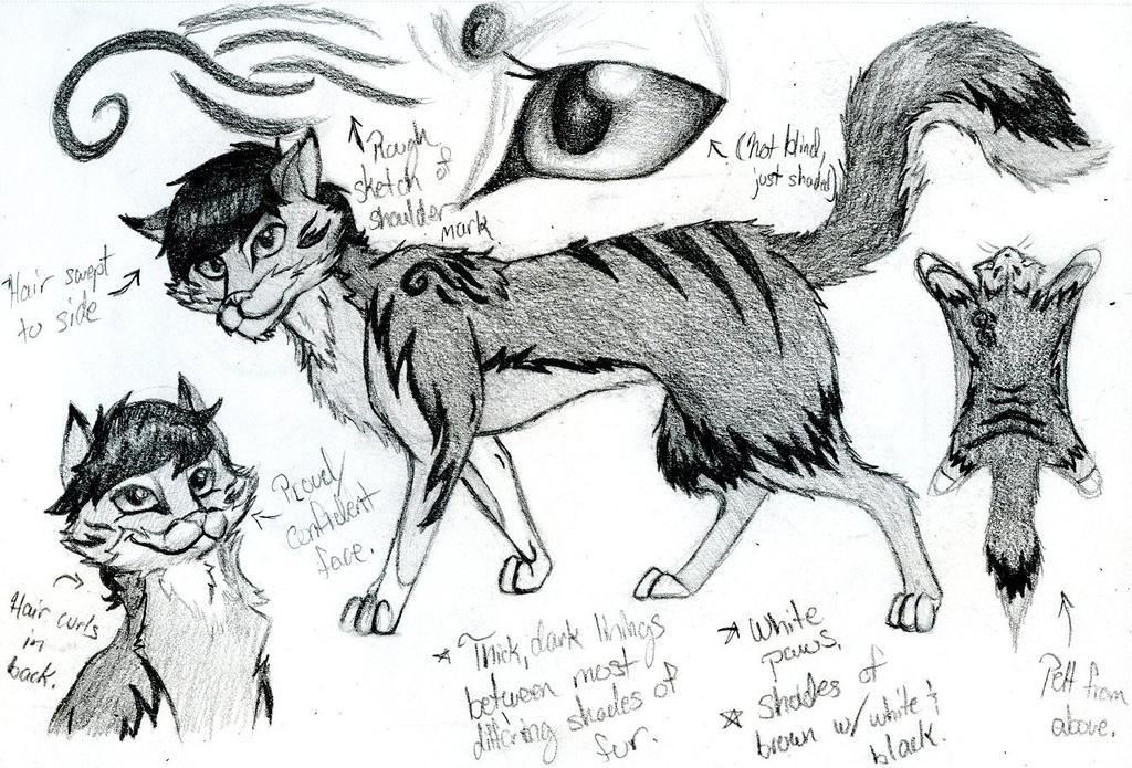Josh's Fursona - Concept Sketches by SavannaEGoth