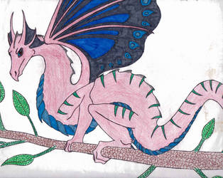 Male Fairy Dragon by DRAGONLOVER101040