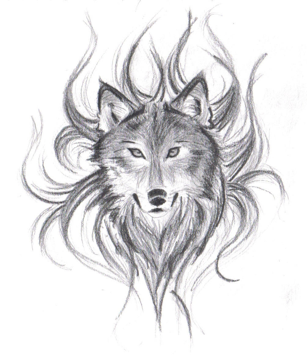 Drawings Of Wolves: Wolf's Face By Believennothing On DeviantArt