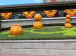 Halloween Train Station 6