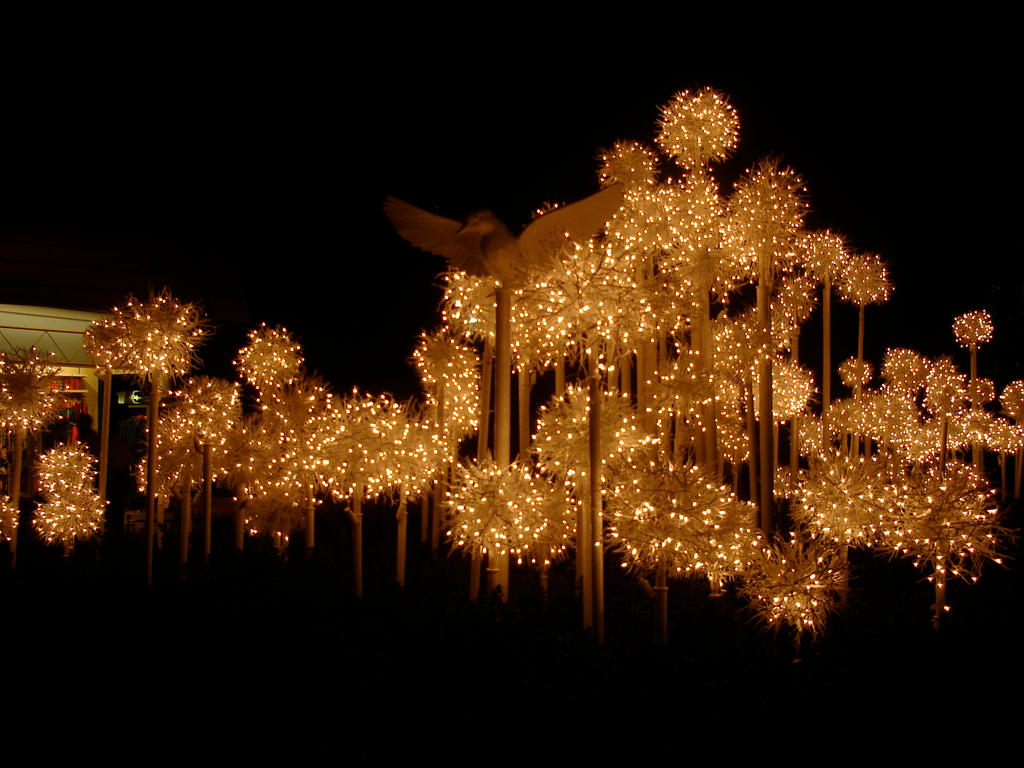 Christmas Lights + Dove Epcot2 by WDWParksGal-Stock