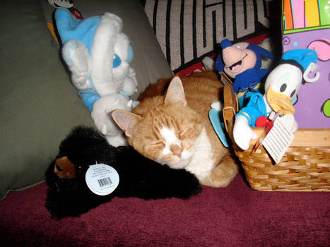 Simba as ET in the Plushes 2