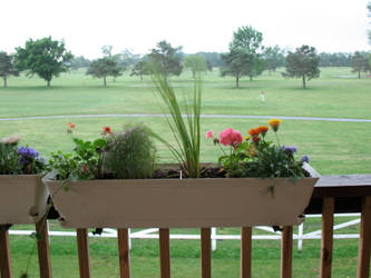 Storm Stock BT Golf Course 11