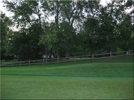 The Rough in the Evening
