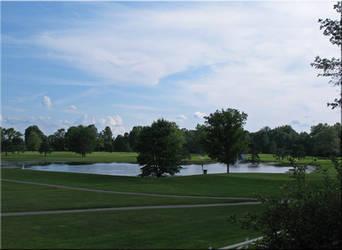 The Pond is Blue like the Sky