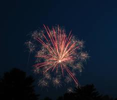 Firework Image 0539