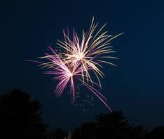 Firework Image 0538