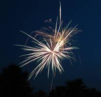 Firework Image 0535