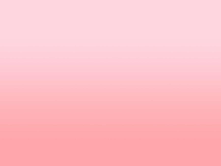 Size  Pink Wrestling Shoes