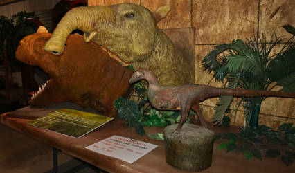 30 Jurassic Journey Exhibit IMG 1919 by WDWParksGal-Stock