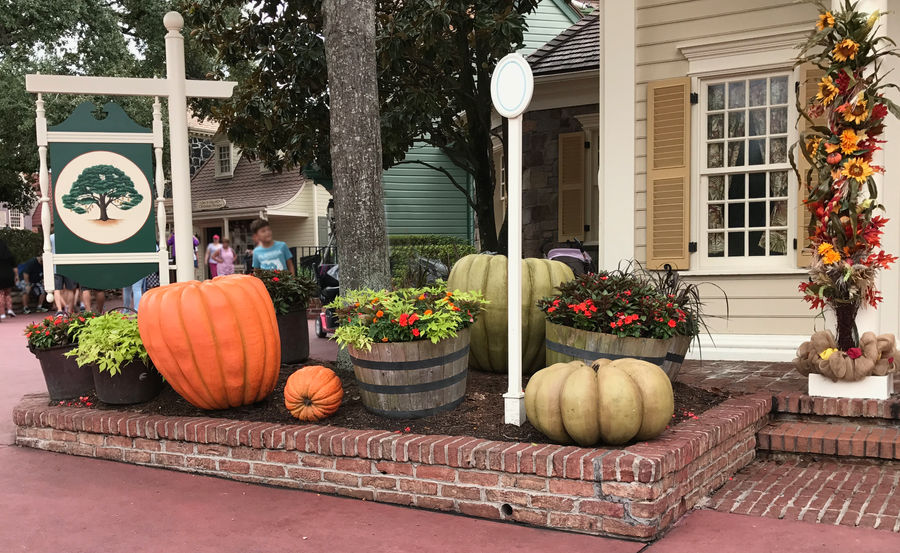A Disney Halloween IMG 2889 by WDWParksGal-Stock