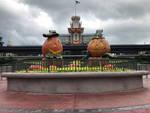 A Disney Halloween IMG 2945