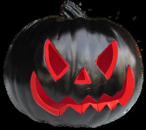 Black Pumpkin IMG 2172 by WDWParksGal-Stock