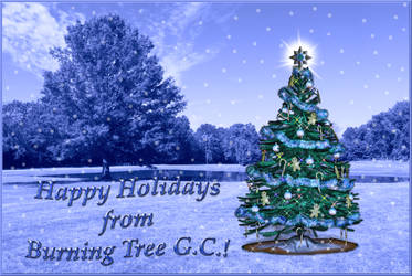 BT GC Holiday Card IMG 3184 by WDWParksGal-Stock