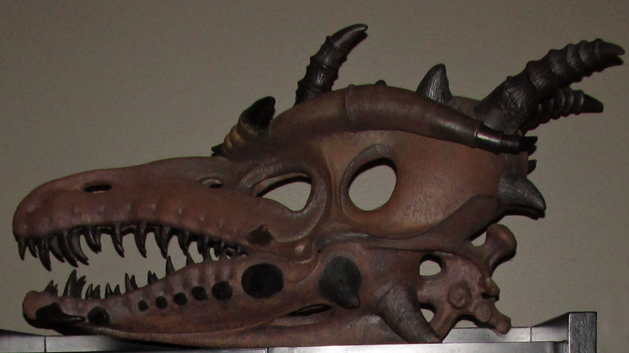A Leather Dragon Skull IMG 2318 by WDWParksGal-Stock