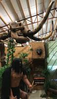 A Mastodon Head and Tusk IMG 5750