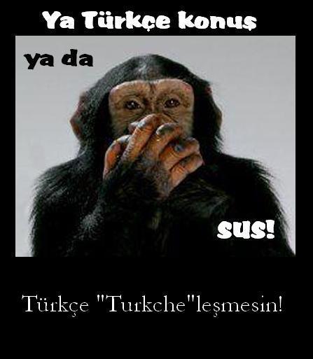 Turkce____Turkche_by_osurukchichei