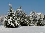 Snow stuff.