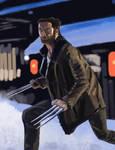 Wolverine by Warr3