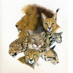 Big Kitties by wyldwoman