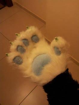 Octavia's paw