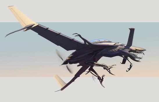 Rutan Bird