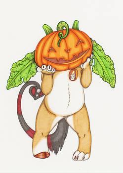 Day 6-Pumpkin