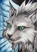 Shadow Cat ACEO for NikiKalat by starwoodarts