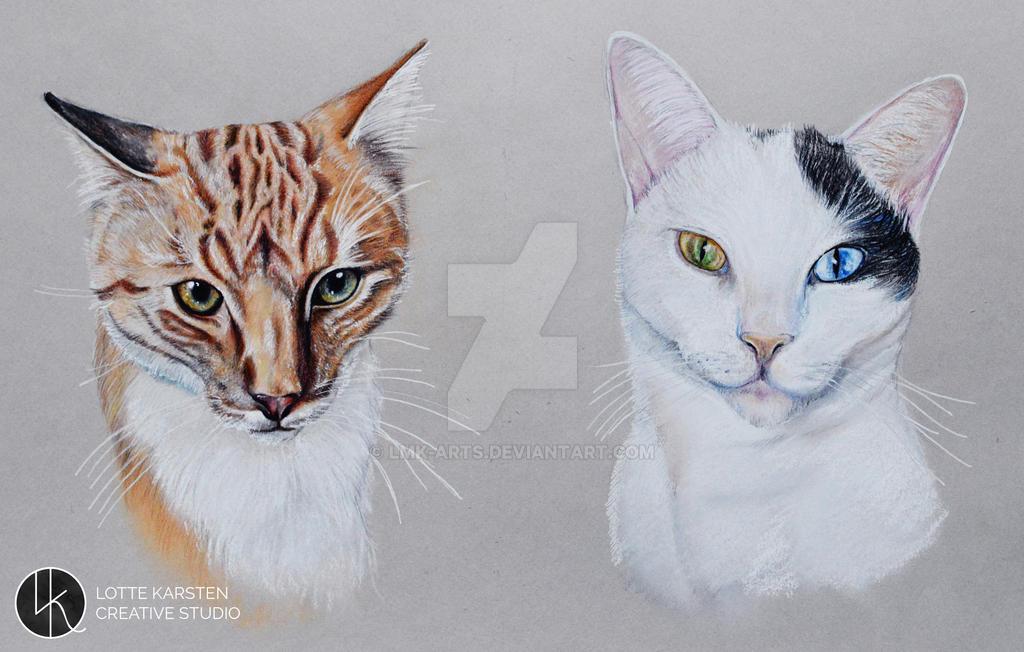 Cat portrait by Lmk-Arts